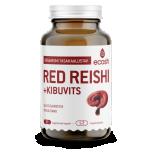 Ecosh Red Reishi kibuvitsaga - ganoderma, organismi tasakaalustav, moodustised, unetus, energia, mälu - 90tbl - toidulisand