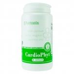 CardioPhyt /Südame taimed/aju, süda, vererõhk, kolesterool, veresooned/Santegra  60kpt Toidulisand