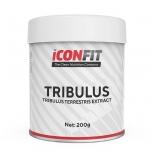 ICONFIT Tribulus - mehe tervis, seksuaalsus, testosteroon - 200g - toidulisand