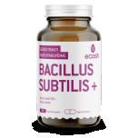 Ecosh Bacillus Subtilis + võilille ja moringaga-seedetrakt, immuunsus, viirused, AB kuuri järgne taastumine 90 tbl - toidulisand