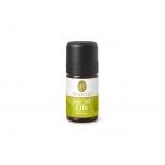Primavera Joy of Life - elurõõmu toetav aroomisegu greibi, piparmündi, laimiga, looduslik eeterlik õli - 5ml