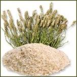 Psyllium Husks -Kõrbe teelehe seemne kestad-söögiisu,kiudained, seedimine,puhastumine 150gr.